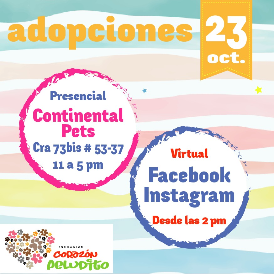 Jornada de adopcion 23 octubre